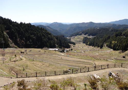 Tanada_2