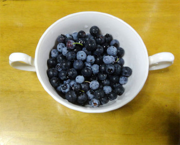 Syuukakublueberry